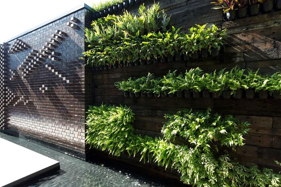 take a look at our work - Garden Design Brisbane