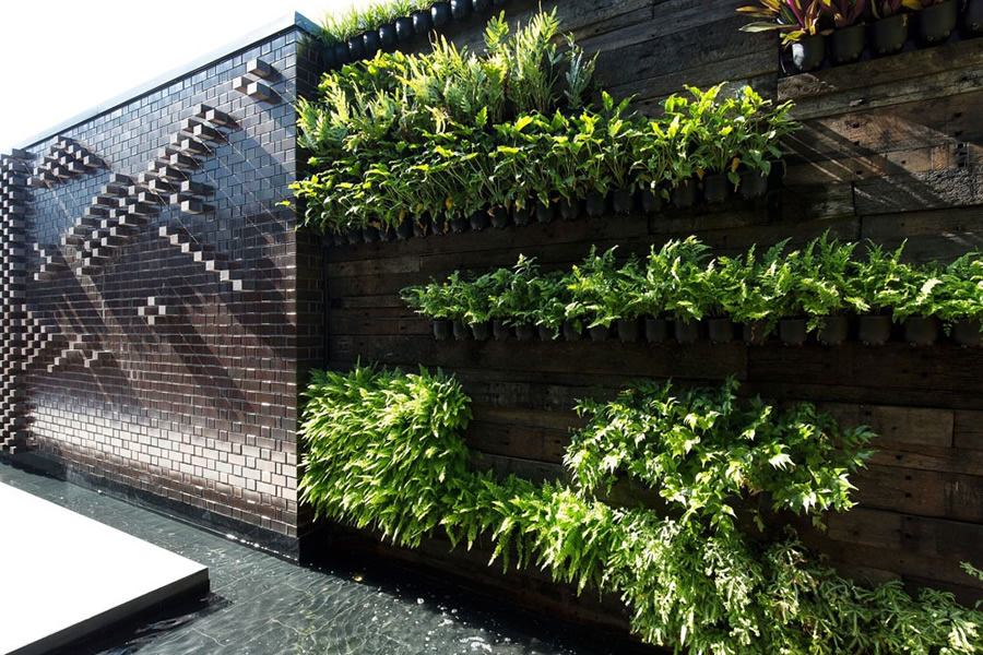 Vertical Gardens In Brisbane Sydney Melbourne Wall