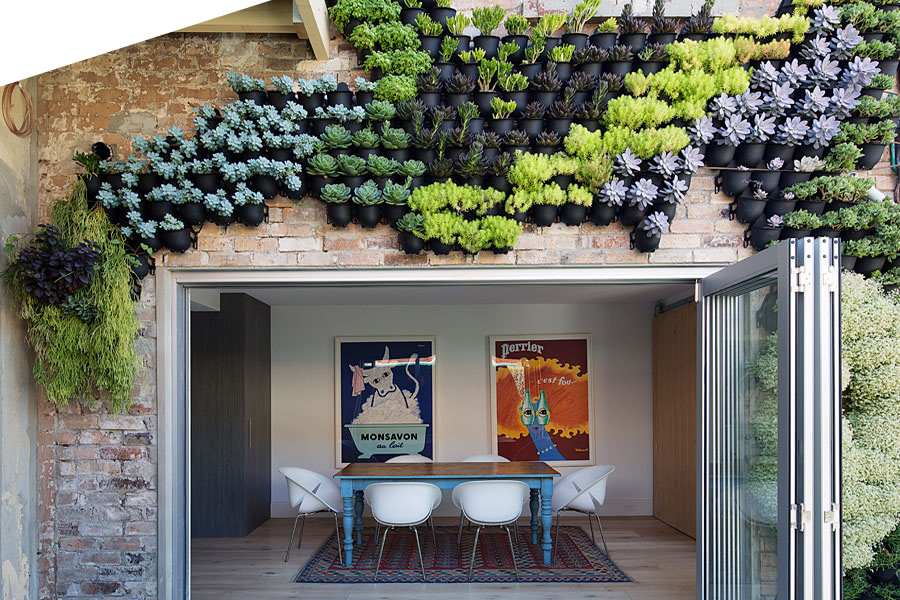 Green Walls Available In Sydney & Brisbane